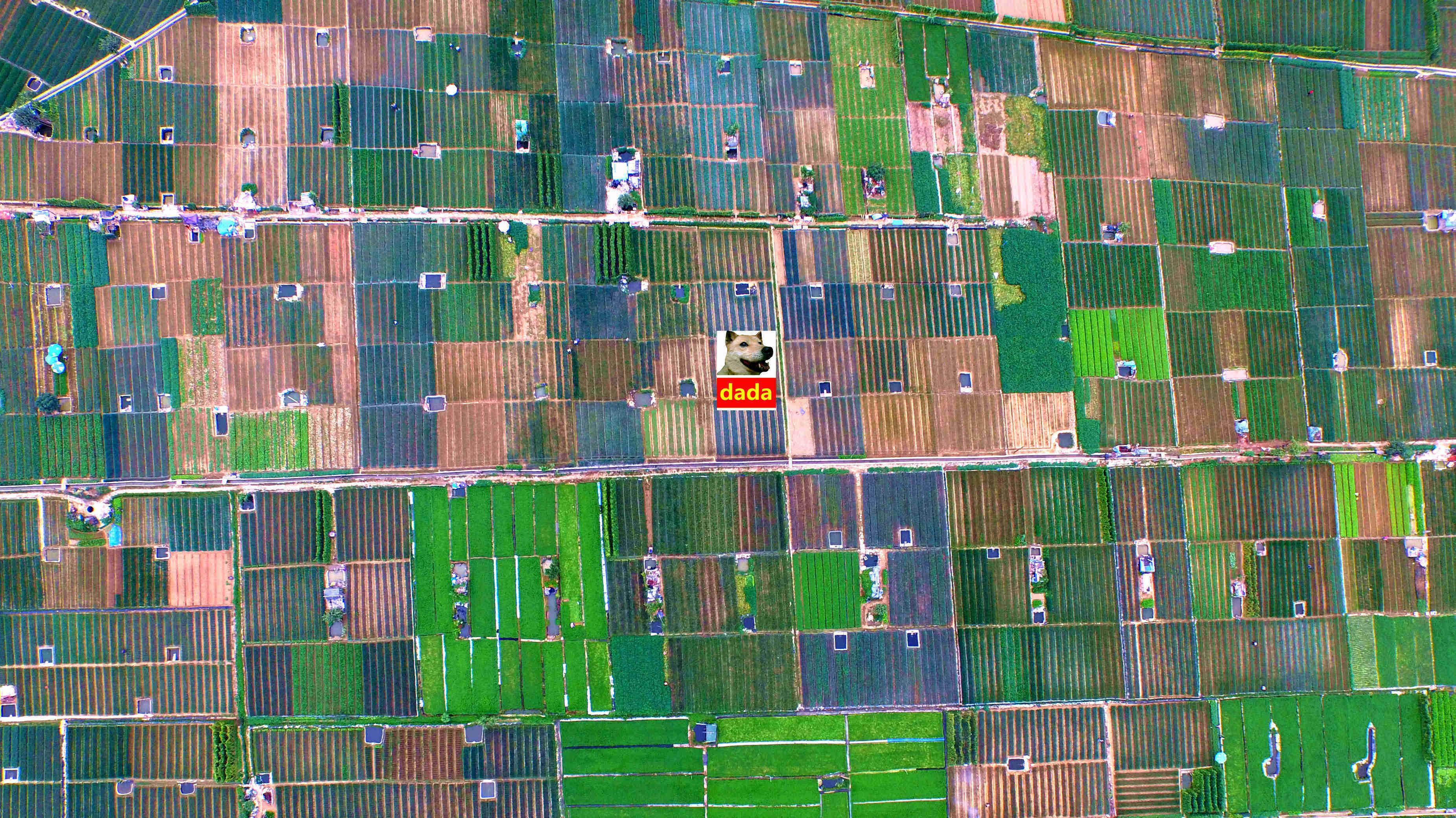 友好农场虚拟镇线路图