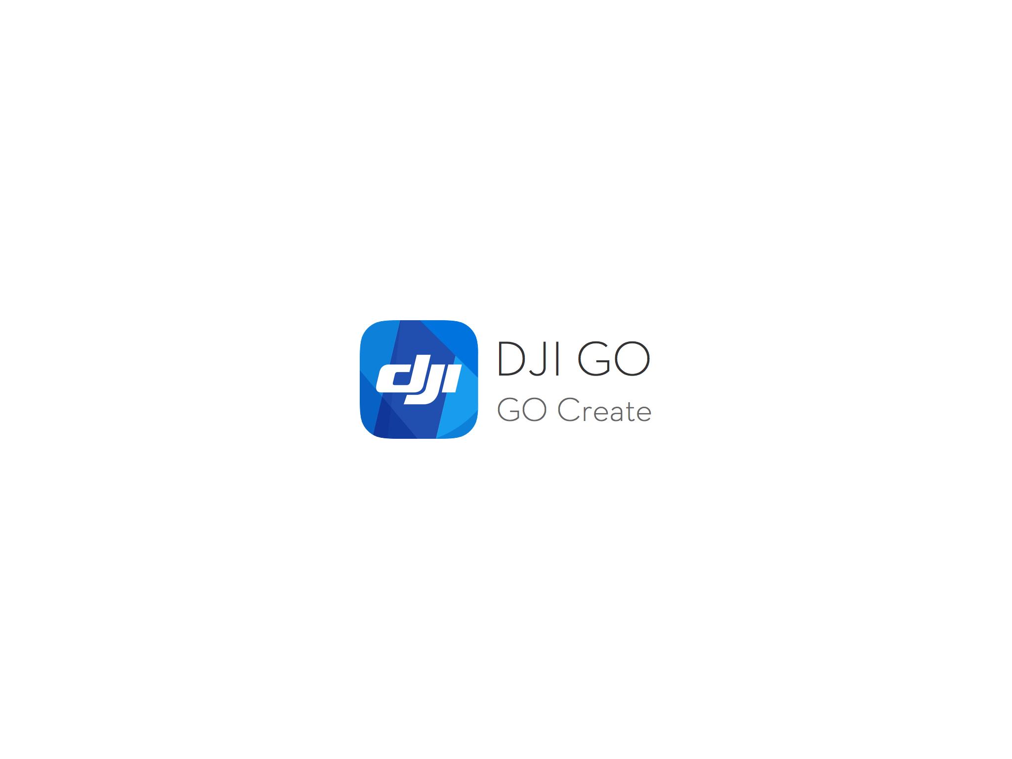进入DJIGO.png
