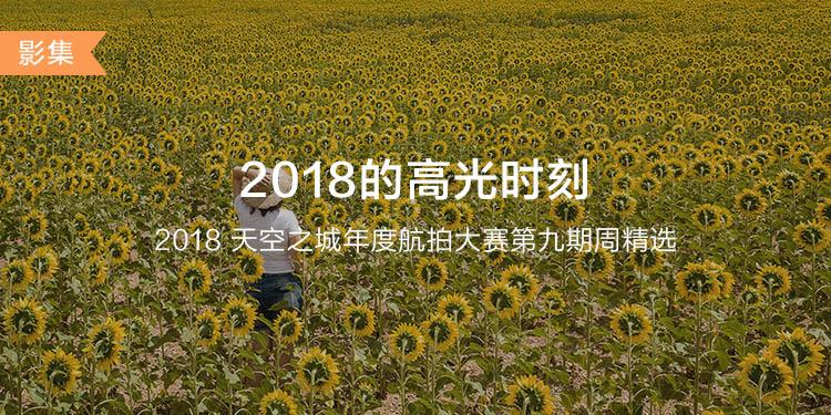CN-DJIGO大banner-phone-750x375 (9).jpg