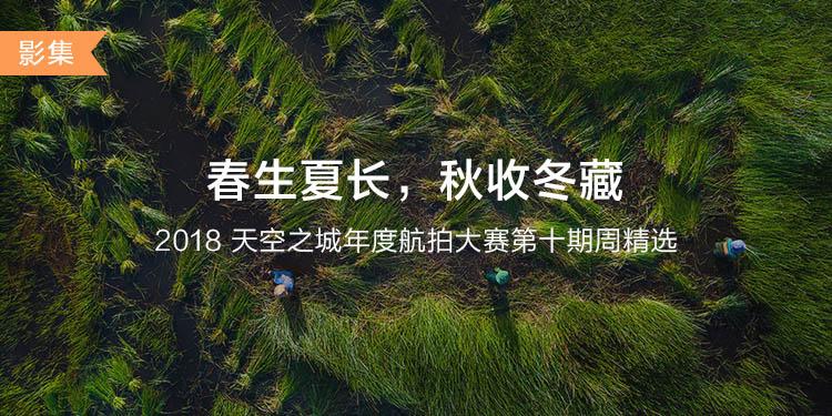 CN-DJIGO大banner-phone-750x375 (10).jpg