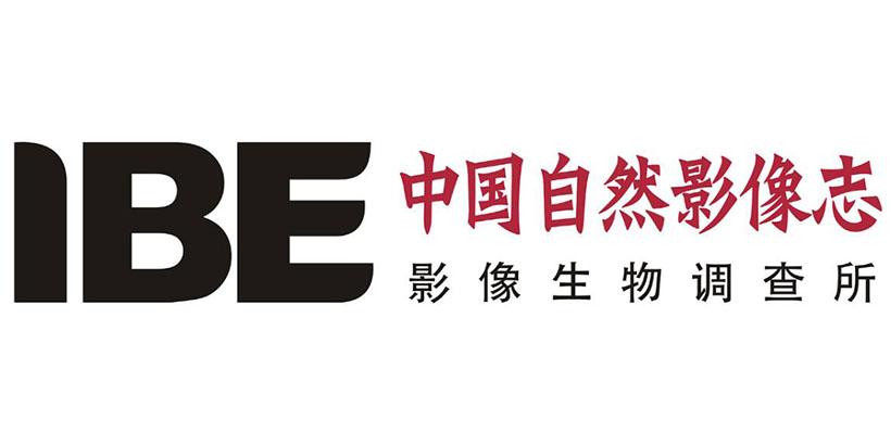 logo logo 标志 设计 矢量 矢量图 素材 图标 820_410